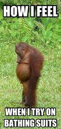 how-I-feel-when-I-try-swimsuits_e.jpg 600×1,260 pixels Monkey, Dating, Monkeys, At Sign
