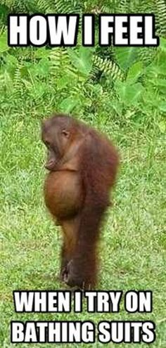 How I feel when I try on bathing suits...