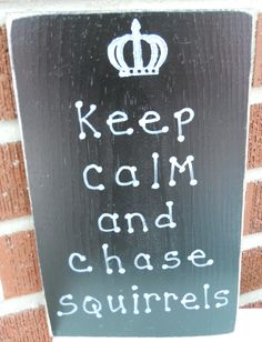 Keep calm and chase squirrels. Handmade in the USA. grandmas-trunk.com