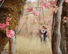 www.frostedproductions.com | #utah #photographer #engagement #photography #beautiful #fall #leaves #cute #couple #kissing #through #the #trees #autumn #colors