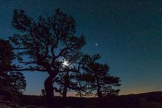 Night sky, stars, peaceful! Night Sky Stars, Night Skies, Cloudland Canyon, Georgia, Moon, Peace, Sunset, Pictures, Outdoor