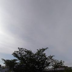おはようございます晴れてると思いきやうっすらと雲が #sky #cloud ##空 #雲 #イマソラ #goodmorning #おはよう