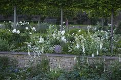 Jinny Blom's deeply romantic planting at Temple Guiting June 2010, courtesy Charlie Hopkinson