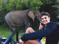 Amazing experiences and close up encounters are commonplace! Volunteer Programs, Big 5, Close Up, South Africa, Elephant, Scene, World, Amazing, Animals