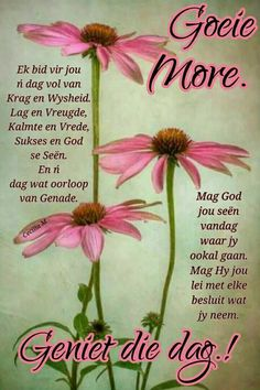 Good Morning Wishes, Good Morning Quotes, Lekker Dag, Gods Princess, Evening Greetings, Afrikaanse Quotes, Sleep Quotes, Goeie More, Special Quotes