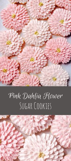 Shades of Pink Dahlia Flower Cookies - One Dozen Decorated Sugar Cookies #affiliate