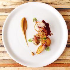 Confit Chicken, Everything Onion - Soil, Purée, Crisp, Roast & Jus