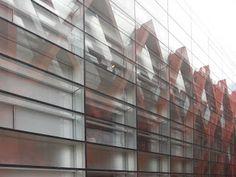 museo-evolucion-humana-burgos-baldeweg