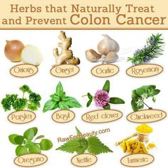 Cancer preventing herbs