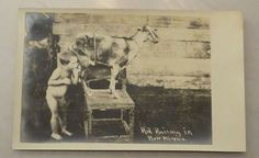 "RPPC ""Kid Raising in New Mexico"" Baby/Child Suckling Goat Teat Unused Real Photo"