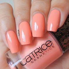 catrice boundless peach