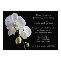 >>>Hello          Orchid on Black Wedding Rehearsal Dinner Invite           Orchid on Black Wedding Rehearsal Dinner Invite so please read the important details before your purchasing anyway here is the best buyHow to          Orchid on Black Wedding Rehearsal Dinner Invite lowest price Fas...Cleck link More >>> http://www.zazzle.com/orchid_on_black_wedding_rehearsal_dinner_invite-161404301126771539?rf=238627982471231924&zbar=1&tc=terrest