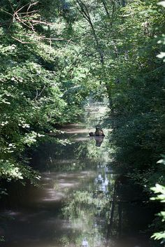 Canal marais Poitevin