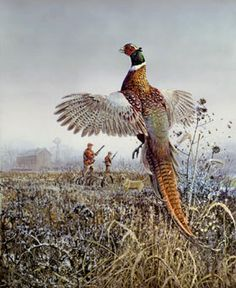 Lindsay Scott Artist | Wildlife art prints plus original paintings with a wide selection from ...
