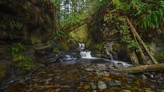 https://flic.kr/p/CowrKw | Another Shot at it - Vancouver Island, Canada | I wasn't going to bother shooting this spot along the Juan de Fuca trail that I had been to a few times before, but as I walked past the area I thought what the heck and went down there in order to 'take another shot at it'.  As I surveyed the angles I decided that it was worthwhile to stick around, but after taking some different comps from the past it was the simple straight on shot from a certain distance that I th...