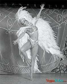Photo of dancer in elegant bird costume from burlesque show