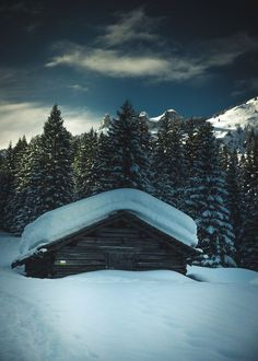 National Geographic Your Shot Let It Snow, Let It Be, National Geographic Photos, Your Shot, Amazing Photography, Pictures, Snow