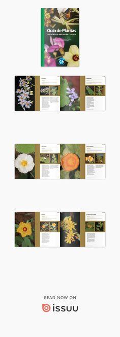 Guia de plantas visitadas por abelhas na caatinga cópia