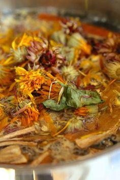 Herbal Infusions and Decoctions – Preparing Medicinal Teas by Juliet Blankenspoor