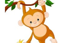 Image result for cool monkey