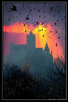 wonderfull to see Transylvania Dracula, Transylvania Romania, Oh The Places You'll Go, Places To Visit, Vampires, Haunted Hotel, Creatures Of The Night, Road Trippin, Great View