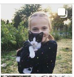 Lego, Cats, Animals, Gatos, Animales, Animaux, Animal, Cat, Animais