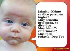 Chiste: Cómo se dice Perro en Inglés en http://frasesimagenescompartir.blogspot.com