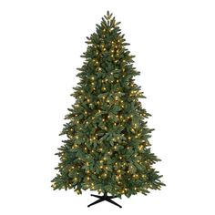 7.5 ft. Pre-Lit LED Bristol Spruce Artificial Christmas Tree with White Lights