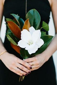 Magnolia leaf bouquet- love the large single flower and the greenery. If Magnolia leaf is unavailable, other large leaf greens may be substituted. Rosa Bouquet, Big Bouquet Of Flowers, Flower Bouquet Wedding, Floral Wedding, Single Flower Bouquet, Palm Wedding, Wedding Table, Gardenia Bouquet, Bridal Bouquets
