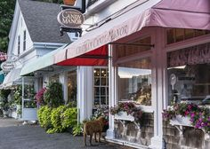 T&C BEST OF: Chatham, Cape Cod  - TownandCountryMag.com