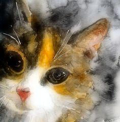 Portrait of my Love by LoveringArts - watercolor painting of a beautiful calico cat.