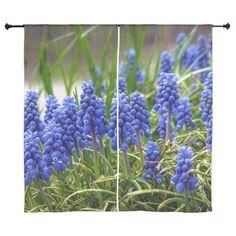 Grape Hyacinth Curtains on CafePress.com