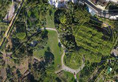 Ortofoto dei Parchi di Nervi dopo la tromba d'aria del 15-10-2016, Nervi, 2016 - Alberto Antinori