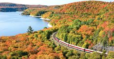 Awaken your inner adventurer in Ontario, Canada, where sunken ships, swimming caribou, and freshwater lakes await. Ontario, National Geographic, Napa Valley Wine Train, Jigsaw, Manitoulin Island, Scenic Train Rides, Sainte Marie, Canada, By Train