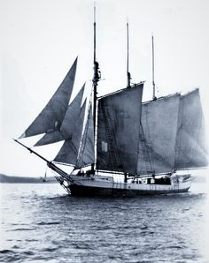 Schooners Workhorses of the Sea.
