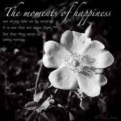 The moments of happiness we enjoy take us by surprise. It is not that we seize them, but that they seize us.  Ashley Montagy #quote