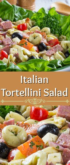 This Italian Tortellini Salad is sure to blow your company away with zesty flavor. Tortellini salad is a huge favorite with foodies looking for a light Italian lunch, and that's just what we're doing come summer time. So grab a bowl and enjoy our bright and refreshing Italian Tortellini Salad along side friends and family! After all, Italian dining is all about the company...and the pasta!