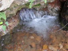 closer look at the natural spring
