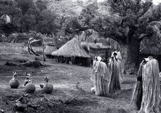 This Mumuye Vaa-Bong masquerade was held at the end of the dry season in the… Art Africain, Africa Art, African Masks, Anthropology, Stage, Museum, Costumes, Traditional, History