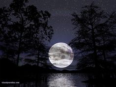 Nature Photography Wallpaper - Night Nature bring me to the fantasy of flying under the starry dark sky with the moonlight view source . Moon Moon, Dark Moon, Blue Moon, Moon River, Over The Moon, Stars And Moon, Moon Dance, Shoot The Moon, Image Nature