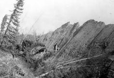 Alaska Earthquake March 27, 1964. Furrowed, slickensided clay ridge in the Turnagain Heights landslide in Anchorage. Ridge is about 20 feet ...
