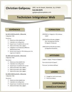 Exemple De Cv Complet Pdf Cv Words Cv Template Curriculum Vitae