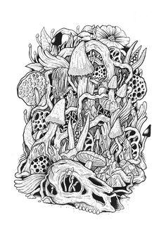 Ilustration series