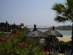 This would be my ideal lifestyle business, beach front restaurant for sale Portugal. Stunning location:)
