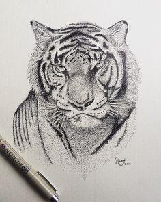 Pointillism drawing of tiger by ArtworkByKaitlin on Etsy