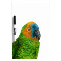 Brazilian Parrot Dry Erase Board by Lily in the Studio