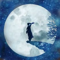 Image result for moon rabbit