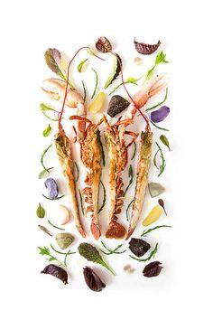 Franck Hamel Salade à la Dinardaise vu par Alain Passard Food Photography Styling, Food Styling, Chefs, Michelin Star Food, Cold Dishes, Reception Food, Food Decoration, Creative Food, Food Design