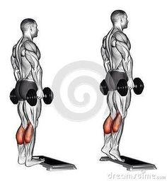 10 ideas de Gym Pierna piernas ejercicios para piernas entrenamiento piernas