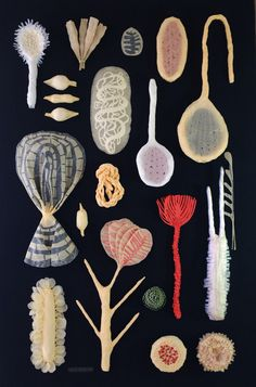 Six Paper Sculptures for a Show. by Elsa Mora, via Behance